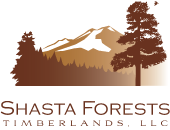 Shasta Forests Timberlands