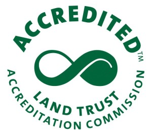 LTAC_Accreditation_Seal