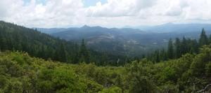 Mountcrest_PFT_PR