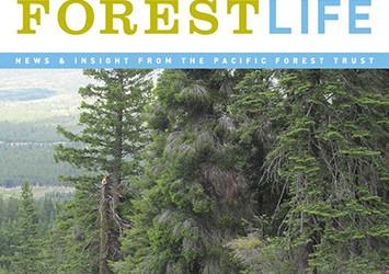 Summer 2017 ForestLife