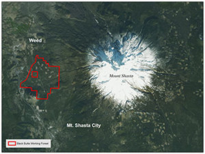 Black Butte Working Forest provides key connection in Shasta area.