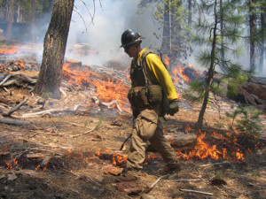 A prescribed fire in Lassen
