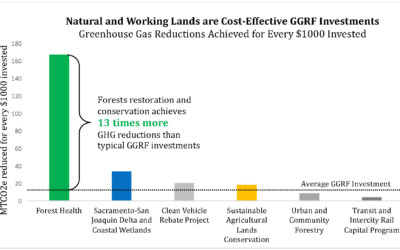 GGRF Investments in Natural and Working Lands