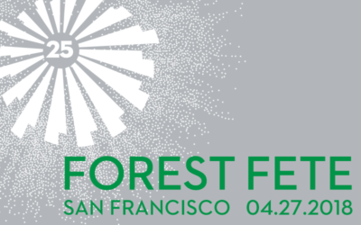 Forest Fete 2018